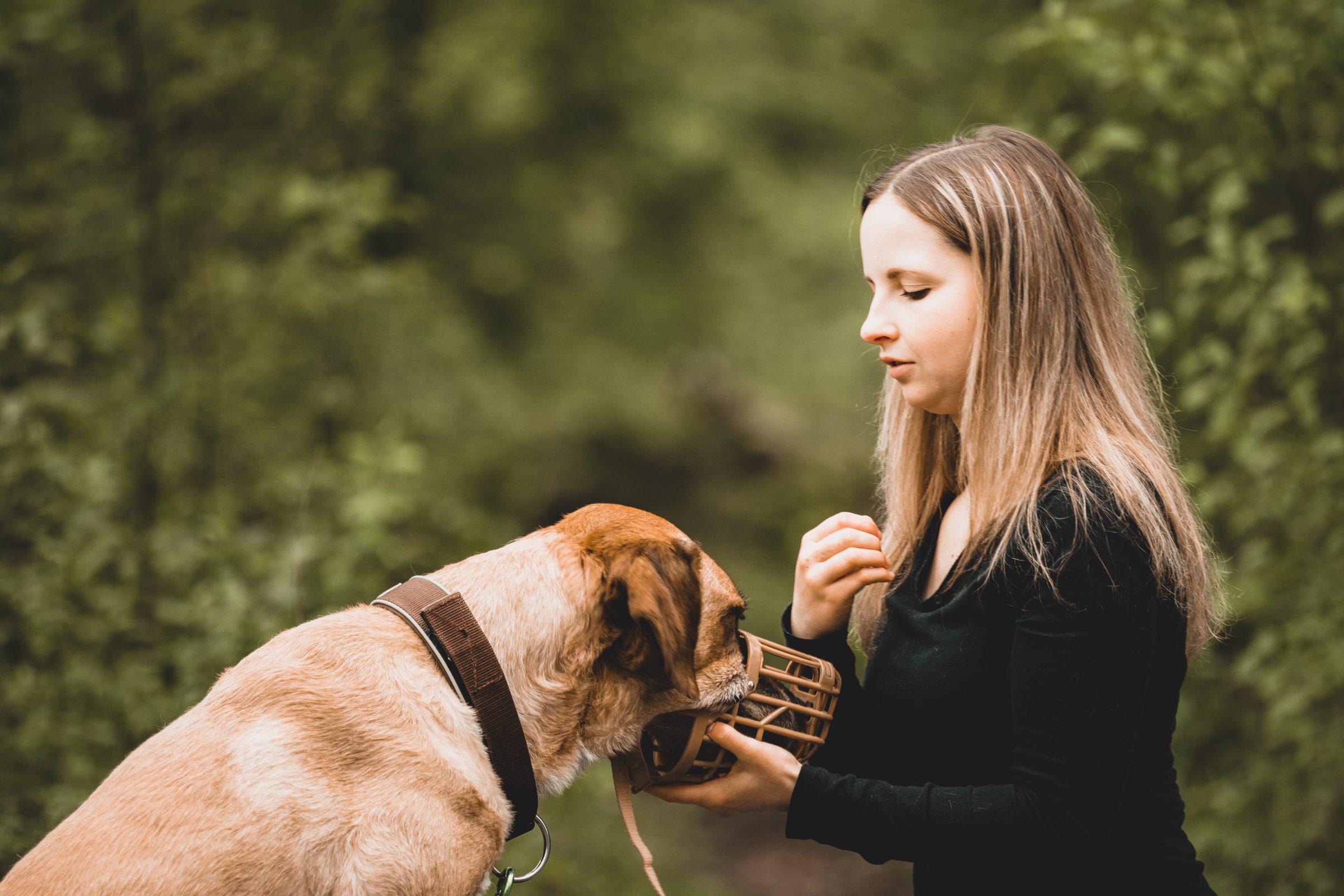 COACH-YOUR-DOG